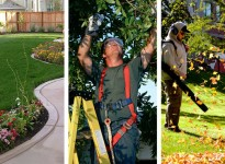 Lawn and Landscape Mainteneance Services in New Jersey