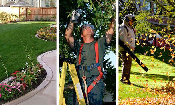 north jersey landscaping service nj landscaping services