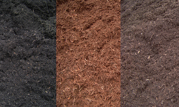 We install mulch in trees, planting beds, and playground areas.